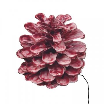 Schwarzkiefer Zapfen am Draht gewachst in Rot Antik (240 Stück)