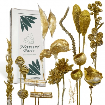 Sortiment Einzelteile gewachst in Glitter Gold ( 55 teilig )