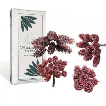 Sortiment Zapfen am Draht gewachst in Rot Antik ( 100 Stück )