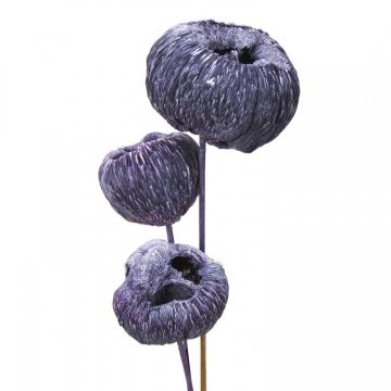 Talami am Stiel in Frosted Purple (300 Stück)