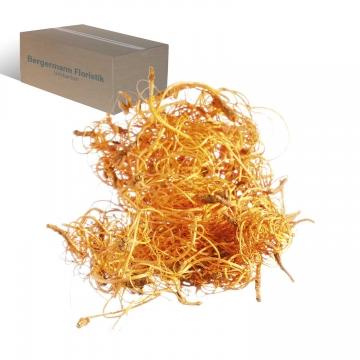 Curly Moos in Orangespring ( 8kg )       (8 Kg)