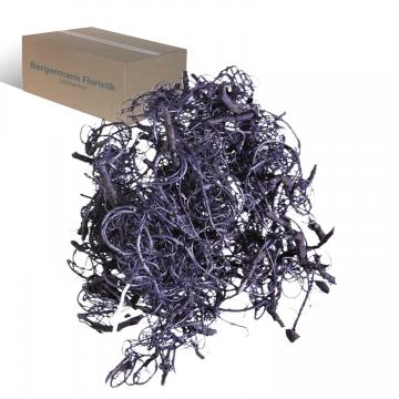 Curly Moos in Violettspring ( 8kg ) (8 Kg)
