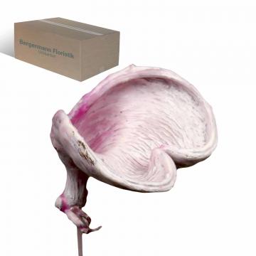 Badam am Stiel gewachst in Viola Ice    (250 Stück)
