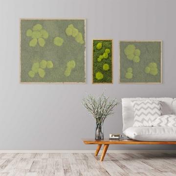 Moosbild Waldmoos & Kugelmoos 57 x 27 cm mit Tischlerrahmen aus geölter Eiche