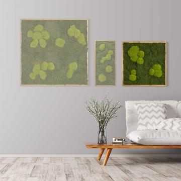 Moosbild Waldmoos & Kugelmoos 55 x 55 cm mit Tischlerrahmen aus geölter Eiche