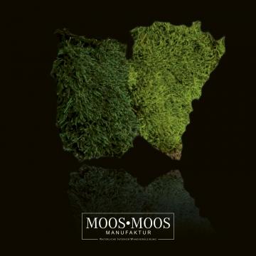 Moos•Moos Waldmoos präpariert und gefärbt in Apfelgrün 1 Kiste (ca. 1 m²)
