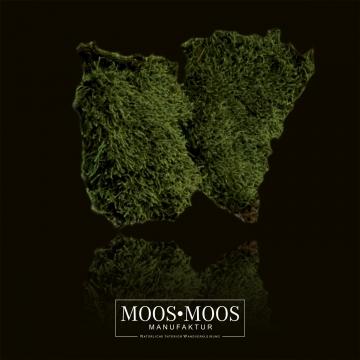 Moos•Moos Plattenmoos / Waldmoos präpariert und gefärbt in Moosgrün 1 Kiste ( ca. 1 m² )