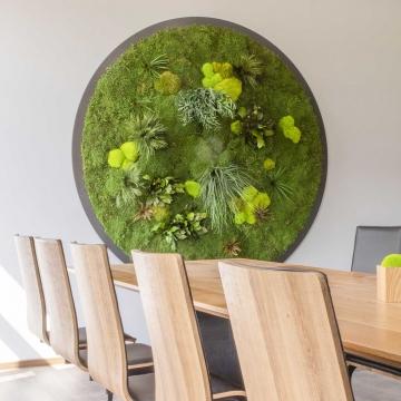 Moosbild Gigant Rund Nature Eye London No. 3 Pflanze Ø 180 cm auf Holzfaserplatte schwarz lackiert