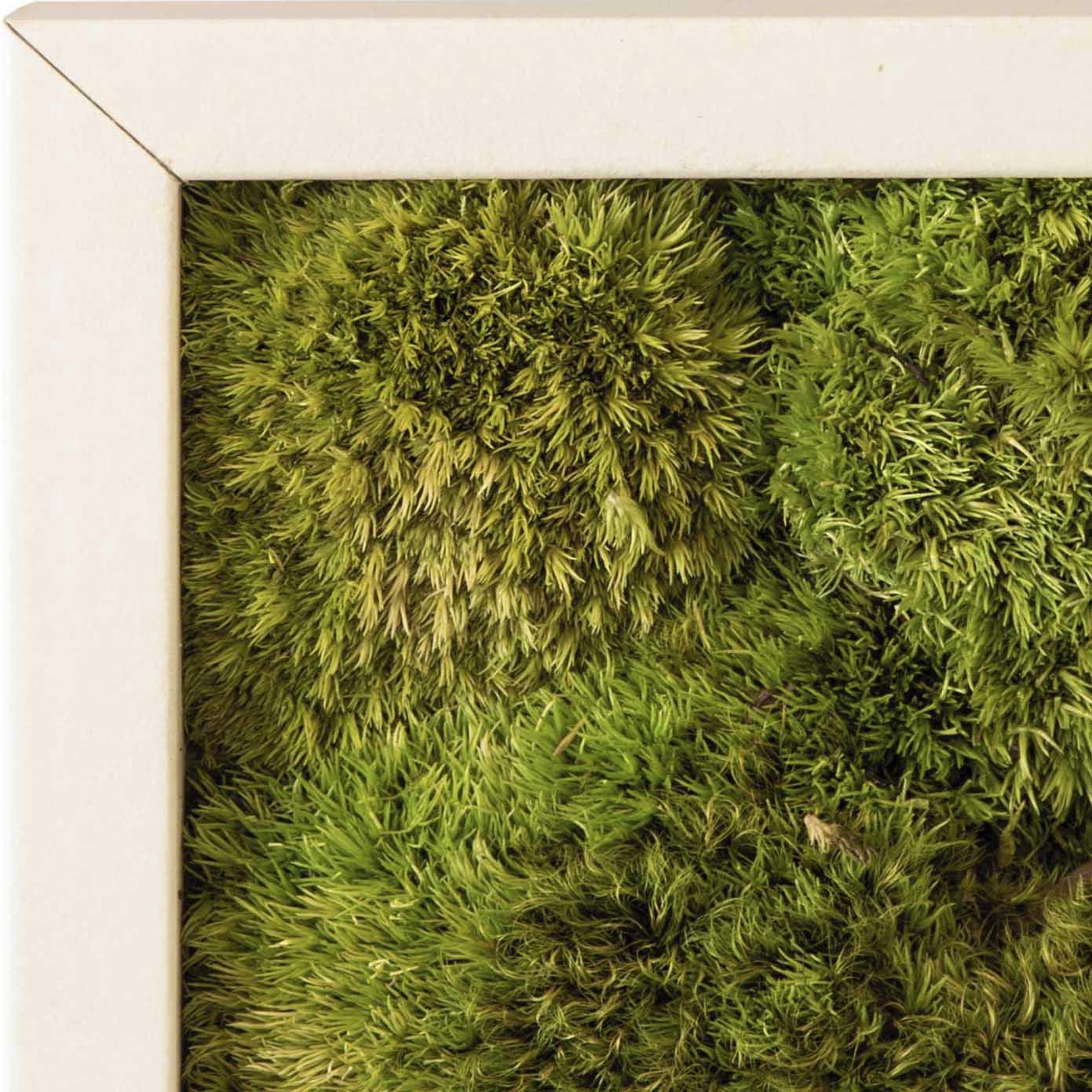 Stylegreen Rahmen